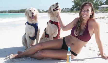 dogs & bikini